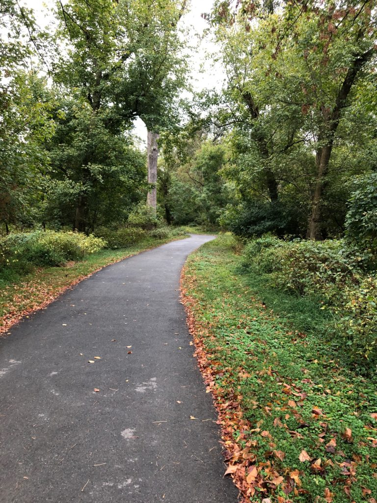 Paved trail through wooded area