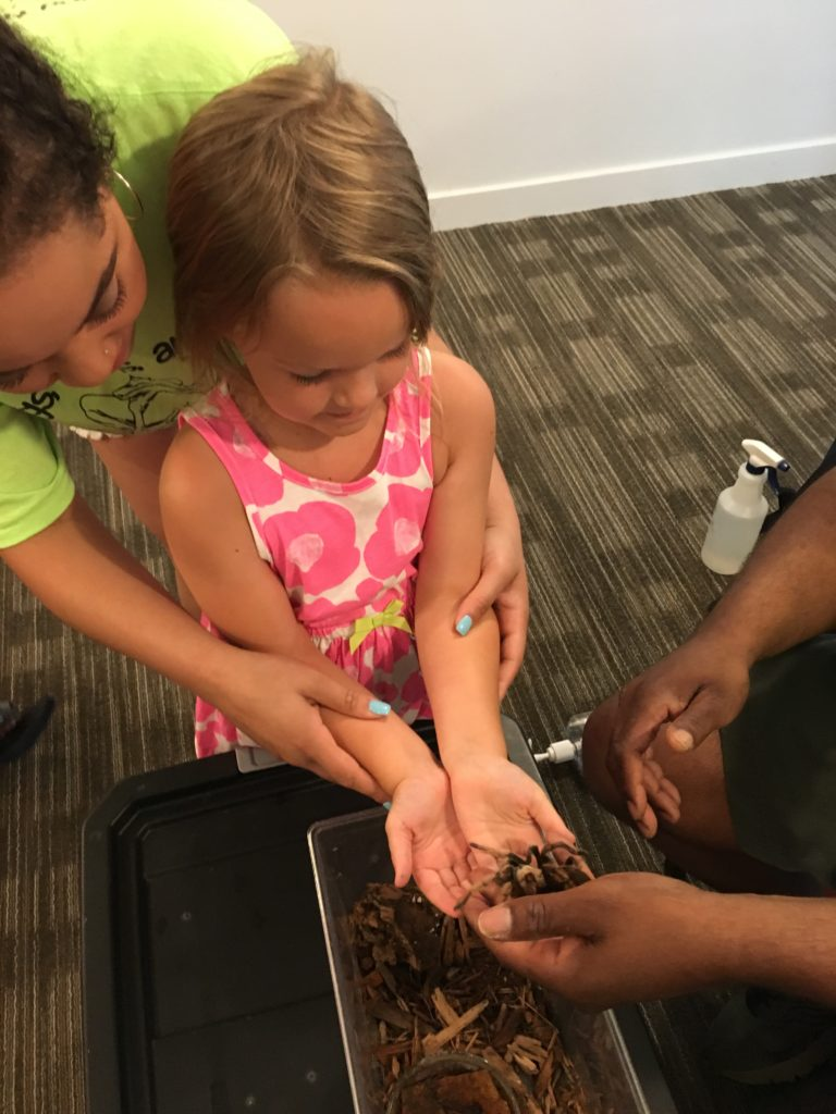 Girl holding tarantula