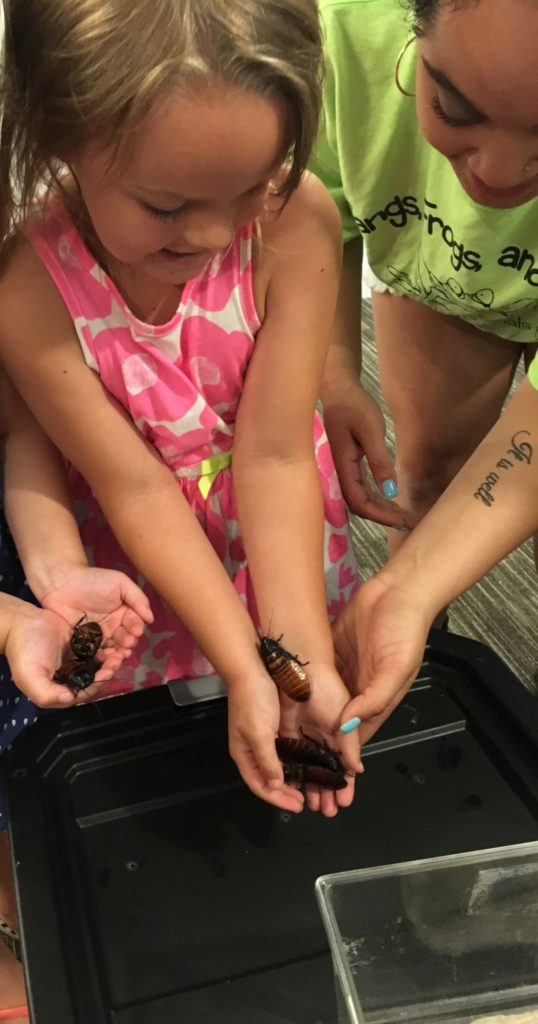 Girl holding cockroach